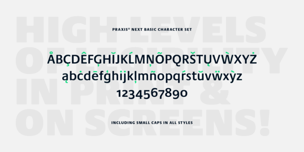 Small_mt_fonts_praxis_next_gallery_005@2x