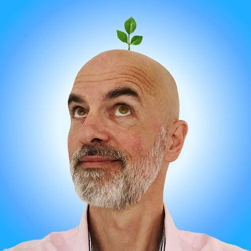 René Verkaart